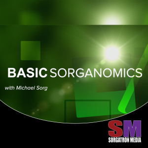 Basic Sorganomics